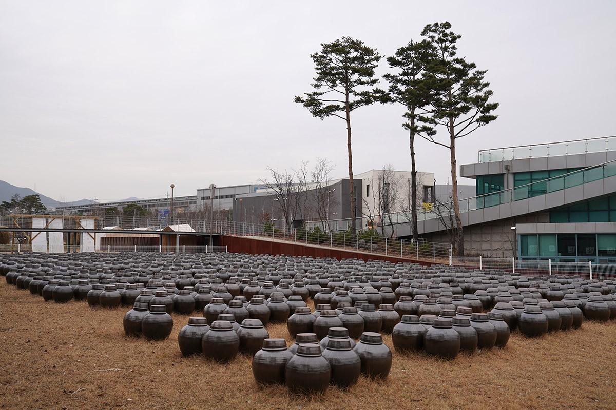 국제발효박물관의 장독대