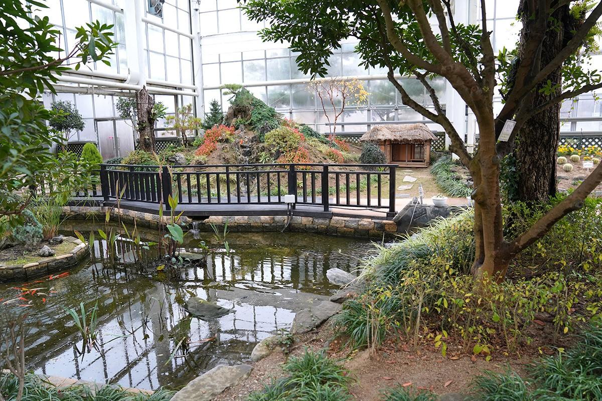 약초허브식물원